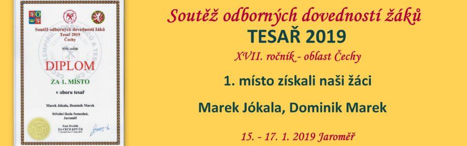 tesar2019
